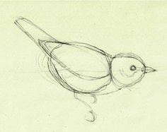 How to draw birds and master feathers in 4 simple steps | Mark ...