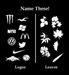 Name These: Logos vs Leaves