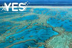 No Nordeste Australiano e com mais de 2 mil km A Grande Barreira de Corais é um patrimônio mundial. Além de conhecer uma paisagem exuberante por suas belezas naturais você ainda pode aproveitar as várias atividades oferecidas por lá como mergulhar ou realizar um voo sobre o recife. Quer fazer seu intercâmbio para a Austrália e conhecer lugares fantásticos como a  Grande Barreira de Corais? Agende seu horário com a YES!  #YESintercambio #PartiuYES #intercambio #Australia #Corais #recife…