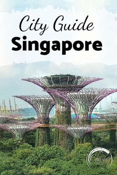Our Singapore city guide covers everything you need to know to plan the perfect trip to Singapore. From the most famous to off the beaten path spots! Singapore Travel Tips, Singapore Itinerary, Singapore City, Places To Travel, Travel Destinations, Gardens By The Bay, China Travel, Bhutan, Laos