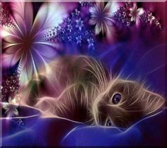 Fractal Animals | Fractal Kitty... | Art About Animals