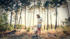 Dog photography pet photography Australian Shepard
