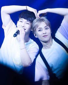 Chen, Xiumin - 151121 Exoplanet - The EXO'luXion in MacauCredit: Vanilla Creamy. Exo Chen, Exo Xiumin, Kaisoo, Chanbaek, Exo Ot12, Kpop Exo, Kris Wu, Got7, Exo Couple