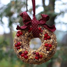 If you want to put birdseed out at you house, why not skip the usual bird houses and make a pretty wreath for your feathered friends instead! By using a bundt pan, you can mold a bird feeder that… Bird Seed Feeders, Bird Feeder Craft, Bird Suet, Thanksgiving Crafts, Holiday Crafts, Holiday Decor, Homemade Bird Houses, Homemade Bird Feeders, Bird Seed Ornaments