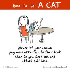 HOW TO BE A CAT: Never let your human pay more attention to their book than to you. Seek out and attack said book.