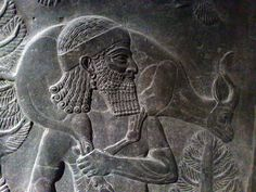 Hunting Scene.  Assyrian about 710-705 BC, From Khorsabad, Royal Palace.