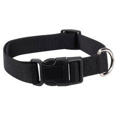 Dog Collars Id