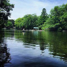 【sandrine._h】さんのInstagramをピンしています。 《Qui aurait envie de faire un tour en barque? (moiiiii 🙋) . . Souvenir de bons instants dans ce parc que j'adore, pendant les beaux jours passés à Tokyo. 🌞 . . #souvenir #lac #barque #japon #nerima #lake #forest #tree #nature #love #tokyo #explore #promenade #koi #carpes #touriste #vacances #holiday #japan #relax #chill  #東京 #日本 #公園 #武蔵関公園 #ボート #大好きな場所 #森 #木 #思い出》