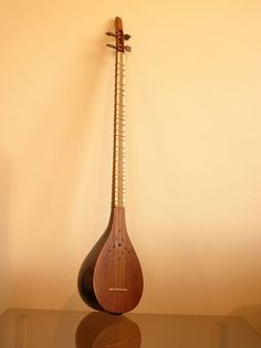 Setar is one of the Iranian plectrum-type string instruments, which is plucked by the player's forefinger's nail. Setar or Setouyeh is a three-cord instrument, which was converted into a four-cord instrument under the reign of the Qajars. It is, in general, an ancient and gnostic instrument usually played at the gathering of dervishes.