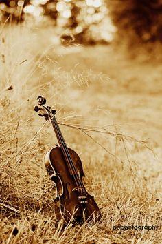 ~ Fields of Gold ~ Zona Musical, Mundo Musical, Piano Y Violin, Violin Music, Violin Art, Violin Instrument, Guitar, Piano Keys, Sound Of Music