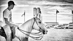 ©2016 Glauco Máximo  #light #memory #horse #horses #cavalo #vaquejada #monochrome #bw  #bnw #blacknwhite #blackandwhite #abqm #euapoioavaquejada #portalvaquejada #congressonacional #clubedocavalonacional #vaquejadalegal #medvet #photography #photo #fotojornalismo #art #animal #portrait #brasilia #brasília #bsb #df #brasil #brazil