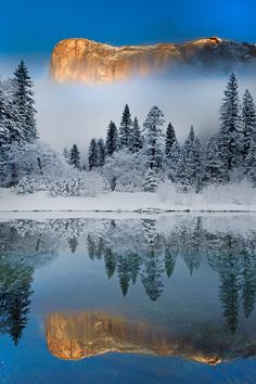 Winter Symmetry - Yosemite National Park, California