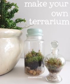 make a terrarium NOW. I'm not much into house plants (something about grandmas I think) BUT these little sweeties are perfect. Check out the one with the bunnies inside. Now go make one. Quickly! Off you go!