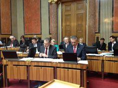 Bundesrat aus Sicht von Sebastian Kurz