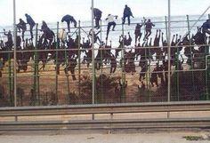 Terrible imagen del asalto del día de hoy a la valla de Melilla. pic.twitter.com/CVfdzjOPYY