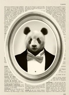 panda in suit from apartment therapy