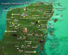 map of the Yucatan including Cancun Playa del Carmen Tulum Chichen Itza Coba Planeque