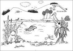 Situační obrázky - U rybníka