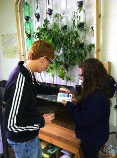High School Teacher Brings Aquaponics and Sustainable Agriculture to the Classroom