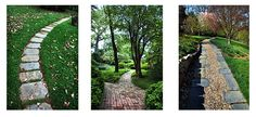 Dumbarton Oaks DC // walk 8