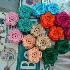 Crochet flowers / flores de crochet