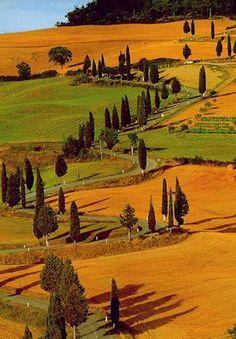 Passeggiate e sentieri nel Chianti e nella Toscana Parco Naturale di Monte San Michele
