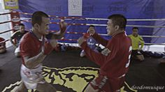 """sifu-taichi-kungfu: """"Oh my god, beast!! """""""