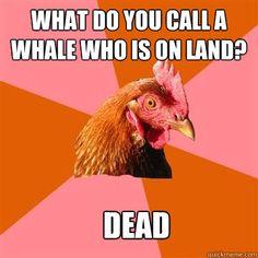 haha..... its so not funny its funny.... haha
