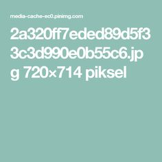 2a320ff7eded89d5f33c3d990e0b55c6.jpg 720×714 piksel