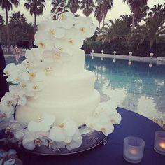 #Repost @antonelladentice ・・・ #aboutyesterdaynight #weddingday #thecake…