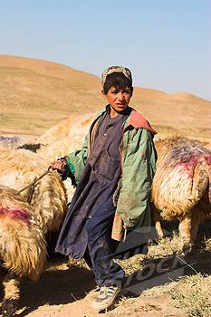 Shepherd boy - Afghanistan  Afghan Images Social Net Work:  سی افغانستان: شبکه اجتماعی تصویر افغانستان http://seeafghanistan.com