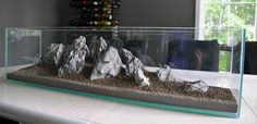 Step by Step procedure of how to set up a wabi-sabi style aquascaping masterpiece