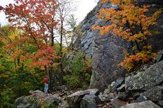 Climbing Access Victory – Michigan's AAA Walls Re-Opened