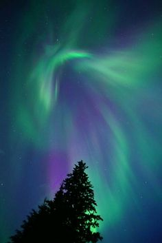 Alberta, Canada Beautiful Lights, Beautiful Places, Star Painting, Alberta Canada, Natural Beauty, Northern Lights, Southern, Sky, Stars
