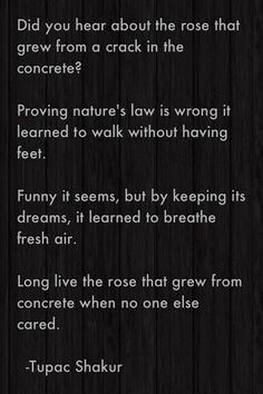 tupac quotes rose concrete The Rose that Grew From Concrete Once upon a TimeQuotes Pinterest