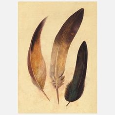 Feather Dance by Canadian artist Terry Fan, $24, now featured on Fab.