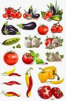 İnsanın gereksinmesi olan ve besinlerin bileşiminde yer alan 40'ı aşkın besin öğesi kimyasal yapılarına ve vücut çalışmasındaki etkinliklerine göre 6 grupta toplanır. Bunlar; proteinler, yağlar, karbonhidratlar, madenler, vitaminler ve sudur.