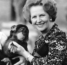 British prime minister Margaret Thatcher (right) holding a chimpanzee. (Photo by Keystone/Getty Images). Bags Online Shopping, Discount Shopping, Online Bags, Shopping Bag, Handbag Online, Margaret Thatcher, The Iron Lady, Stylish Handbags, New Fashion Trends