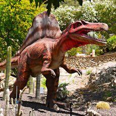 DinoPark Algar Horses, World, Animals, Cinema, Animales, Animaux, Animal, The World, Animais