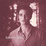Twilight Forever…