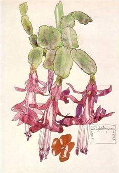 Charles Mackintosh