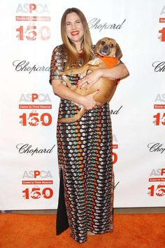 Celebs and their pets in 2016:     Drew Barrymore held a cute pooch as she attended the ASPCA's 19th Annual Bergh Ball in New York City... - StarPix/REX/Shutterstock/Rex USA
