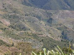 Hike 40
