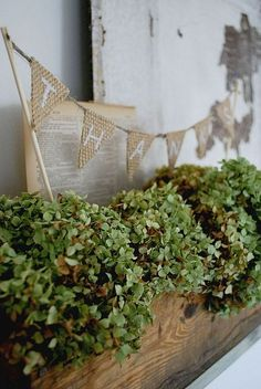 Decorating for Autumn on a Budget
