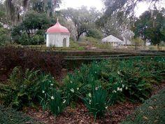 antebellum-plantations-rosedown