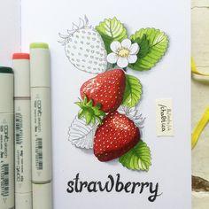 Фрукты и ягоды сочными маркерами (20 марта 14:00)