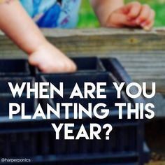 I know it's a bit early yet for everyone but I'm just curious. When are you guys starting to plant this year?