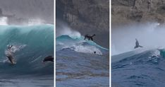California sea lions surfing on enormous waves is the video you need today | Boing Boing