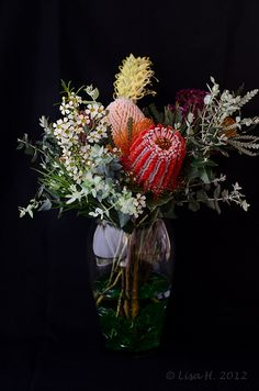 Wedding flowers native australian protea bouquet 68 ideas for 2019 Australian Native Garden, Australian Native Flowers, Australian Plants, Protea Bouquet, Flower Bouquet Wedding, Flower Bouquets, Ikebana, Australian Wildflowers, Arte Floral