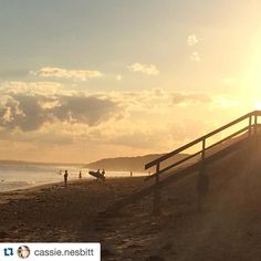 It might not look like this today ... but we can dream ... Knock out capture by @cassie.nesbitt   #13thbeach #nofilterneeded #sunrise #surfing #nofilter #repost  #aguideto #aguidetobarwonheads #barwonheadscafes  #smallbusiness #shoplocal #livelovelocal  #photography #ocean #beach #surf  #barwonheads #oceangrove #pointlonsdale #bellarine #bellarinepeninsula #geelong  #visitvictoria #surfcoast #greatoceanroad #tourismgeelong #SeeAustralia #visitgeelongbellarine #melbournetouristguide…